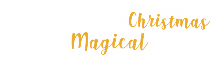 Gift the gift of cinema this Christmas with a magical gift box experience